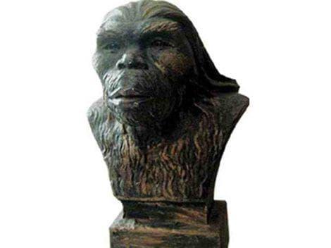 Хомо еректус юанмоуензис - Юанмоуският човек - изображение
