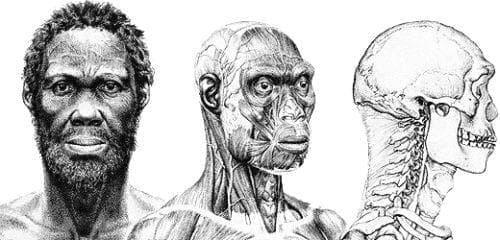Хомо сапиенс идалту: първородният в човешката еволюция - изображение