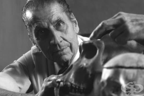 Хосе Делгадо и невероятните му опити да контролира човешкия мозък  - изображение