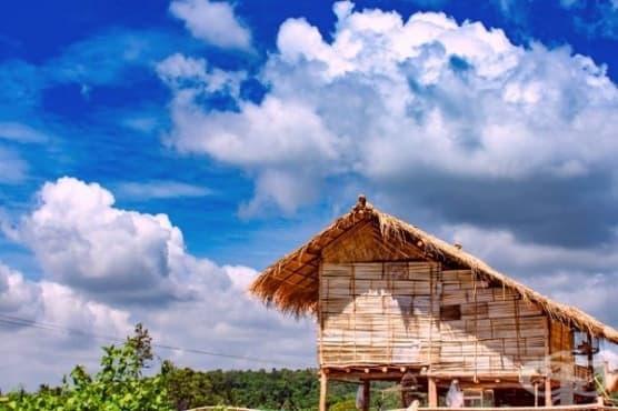 Как английски колонист става родоначалник на населението на тропически остров - изображение