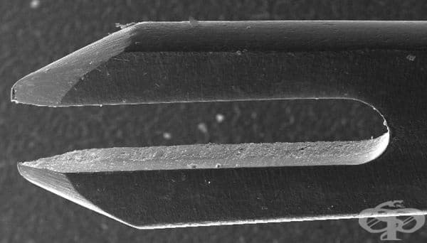 Игла, използвана във ваксинацията срещу вариола от 1968г.  - изображение