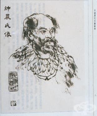 Император Шенонг – бащата на китайската медицина и фармакология - изображение