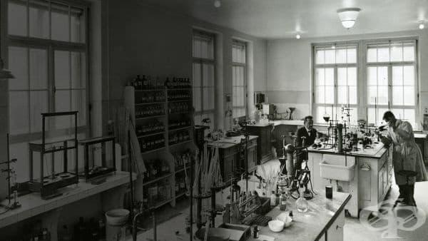 """Иновации и бърз напредък за """"Рош"""" в периода от 1945 година до 1965 година  - изображение"""