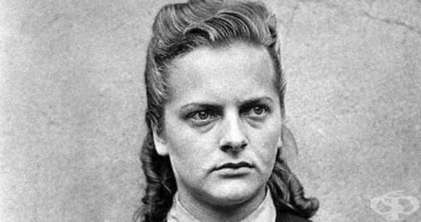 Ирма Грезе – садистичният звяр от Аушвиц-Биркенау  - изображение