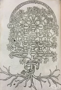 Исидор Севилски и неговата енциклопедия, популярна до края на Средновековието - изображение