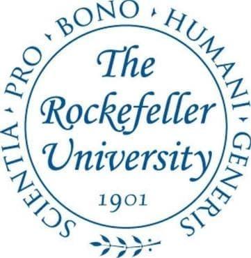 """Исторически факти за университета """"Рокфелер"""" - изображение"""