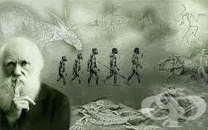 История на Чарлз Дарвин - изображение