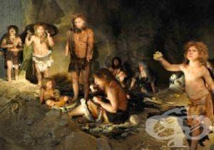 История на неандерталеца - изображение