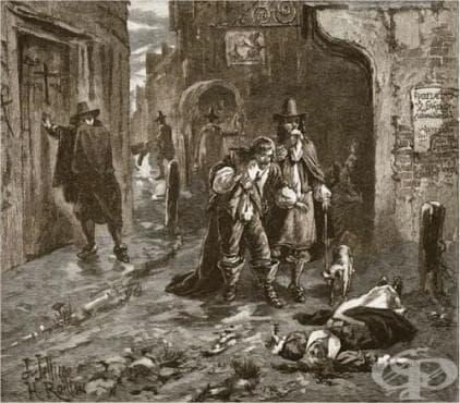 История на чумата - изображение