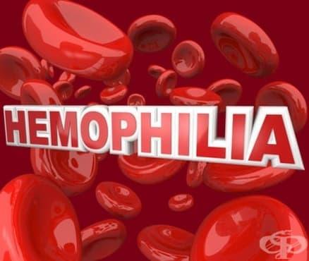 История на хемофилията  - изображение