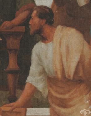 История на Александър от Тралес - изображение