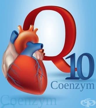 Изследвания от 70-те години на 20 век, касаещи употребата на коензим Q10 в терапията на пациенти със сърдечни заболявания - изображение