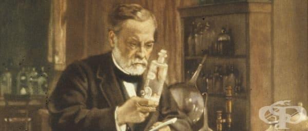 Жозеф Мейстер: пациентът, лекуван от Луи Пастьор през 1885 година - изображение