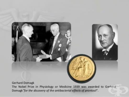 Кариера на Герхард Домак до 1947 година: Нобеловата награда  - изображение