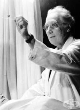 Катрин Макфарлейн и приносът й за развитието на акушерството и гинекологията в САЩ  - изображение