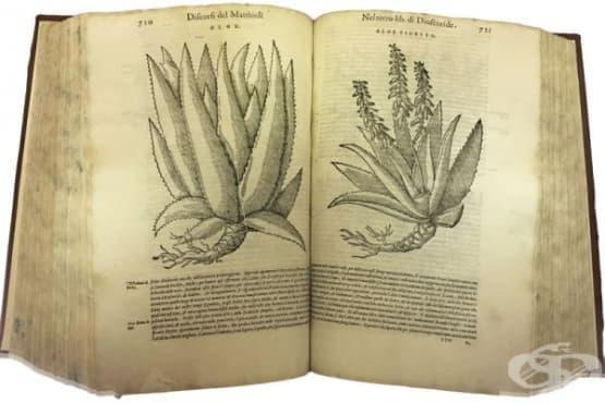 Как неуспешният опит на средновековни монаси да лекуват чумата, довежда до създаването на луксозна козметика за кожа - изображение