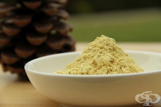 Лечебни употреби на боровия прашец в китайската традиционна медицина - изображение