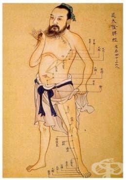 Лечение на треска, по време на управлението на династия Хан - изображение