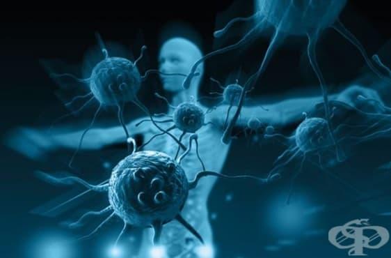 Лекари, изследвали произхода и доктрината за онкологичните заболявания - изображение