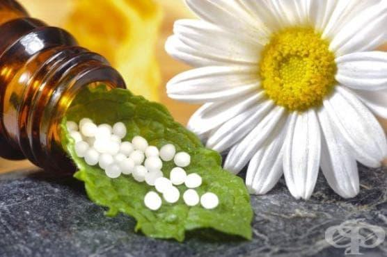 """""""Materia Medica Pura"""" на Самюел Ханеман от 1810 година – първо описание на хомеопатично изпитване  - изображение"""
