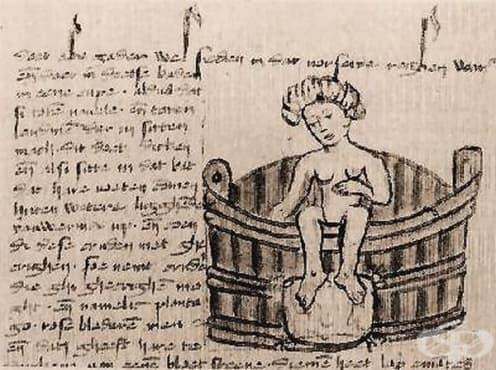 """Медицинският трактат """"Тротула"""" – произход и организация на съдържанието - изображение"""