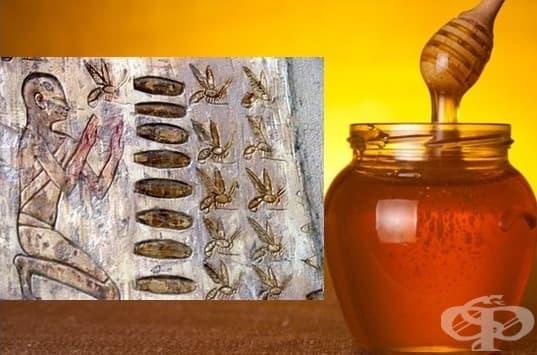 Употреба на пчелния мед в медицината на древния свят - изображение