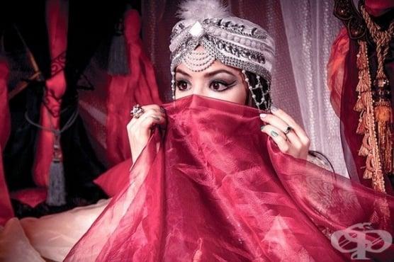 Османският харем: структура и репродуктивна функция - изображение