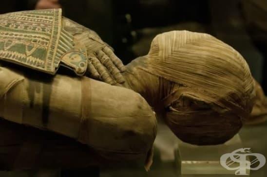 Фараони и мумии: заболяванията, от които са страдали древните египтяни - изображение