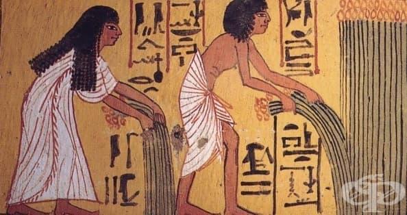 Вегетарианци в Античността, част 1 - Египет - изображение