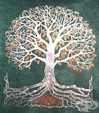 Народна келтска медицина - изображение
