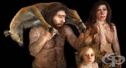 Неандерталците като част от човешката еволюция - изображение