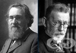 Нобелова награда на Иля Мечников за имунитета - изображение