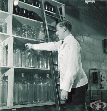 Образователни степени по фармация в Русия до 1881 година - изображение