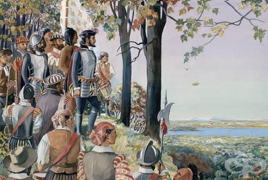 Френски екипаж от 16-ти век е спасен от смъртоносна болест с помощта на мистично дърво - изображение