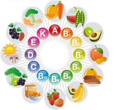 Основни етапи от историята на витамините - изображение