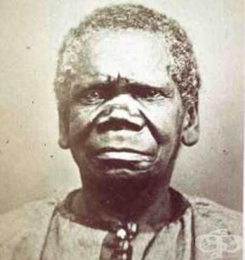 Особености на австралоидната раса - изображение