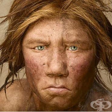 Откритие на фосилизиран кътник от Денисов човек - изображение