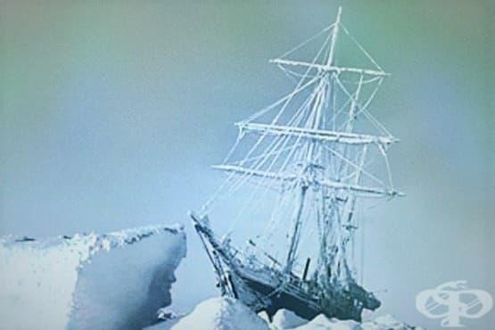 Как Ърнест Шакълтън успява да спаси екипажа си от бяла смърт в Антарктида - изображение