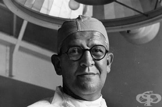 Пионерът в пластичната хирургия Арчибалд МакИндо и клубът на морските свинчета - изображение