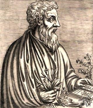 Писмени творби на елинистически автори, разказващи да тракийската лечебна флора - изображение