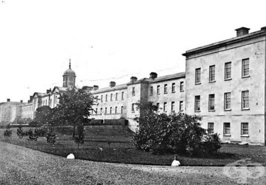 Поява и развитие на ирландските приюти за психично болни пациенти през 19 век  - изображение