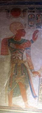 Поява на вариола в Египет - изображение