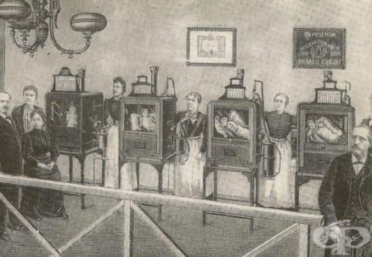 Появата на първите кувьози и ролята им в развитието на неонатологията  - изображение