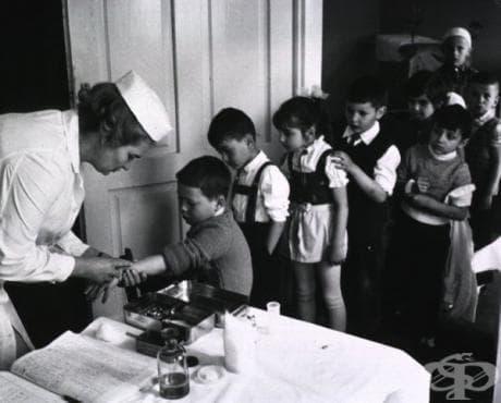 Появата на туберкулозната ваксина и данни за профилактиката на заболяването през 20-ти век  - изображение