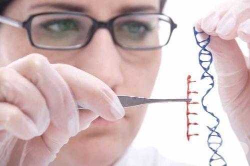 Последствия от мораториума на генното инженерство - изображение