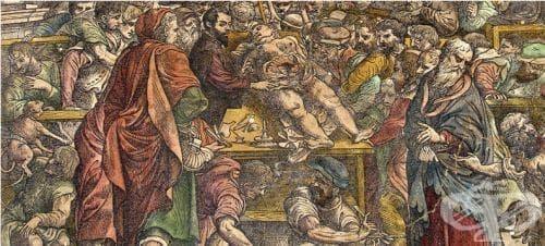 Отзиви от последната аутопсия на Везалий - изображение