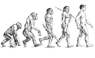 Прав ли е бил Дарвин в теориите си, свързани с произхода на човека? - изображение
