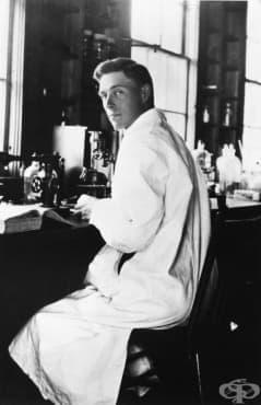 Пречистване на инсулина през 1922 година  - изображение