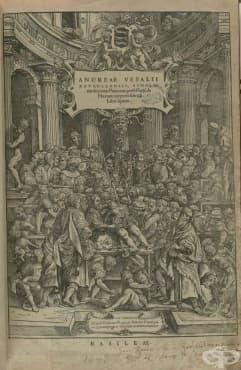 """Представа на Андреас Везалий за анатомията и човешкото тяло, отразена в творбата му """"De Humani Corporis Fabrica"""", 1 част - изображение"""