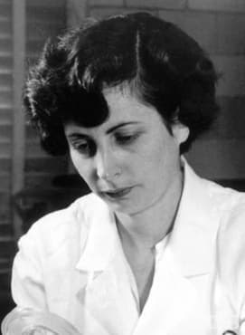Принос на д-р Нина Браунвалд - лекарката, имплантирала първата изкуствена митрална клапа през 1960 г. - изображение